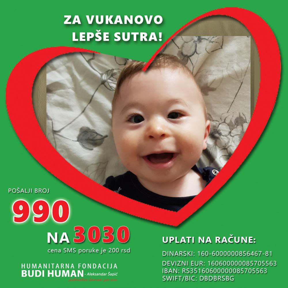Вукан Видојевић